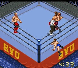Things getting out of hand as the Road Warriors battle Terry Funk and Dory Funk, Jr.